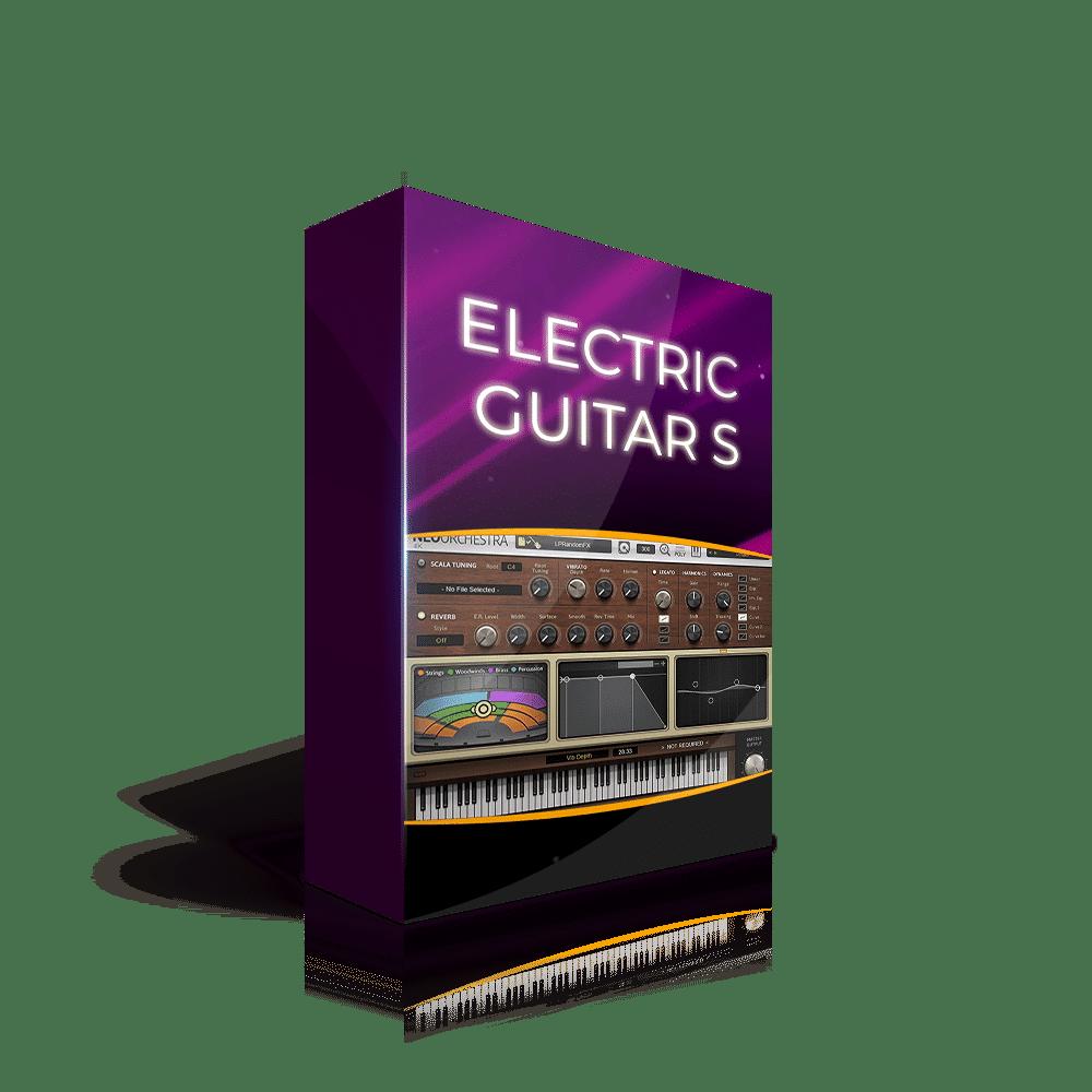 Electric Guitar Schecter